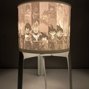 Lithophane Lamp Shade